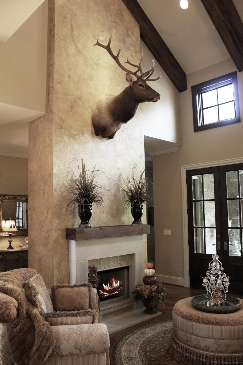 Beautiful wall color and feature wall plaster faux design and elk.