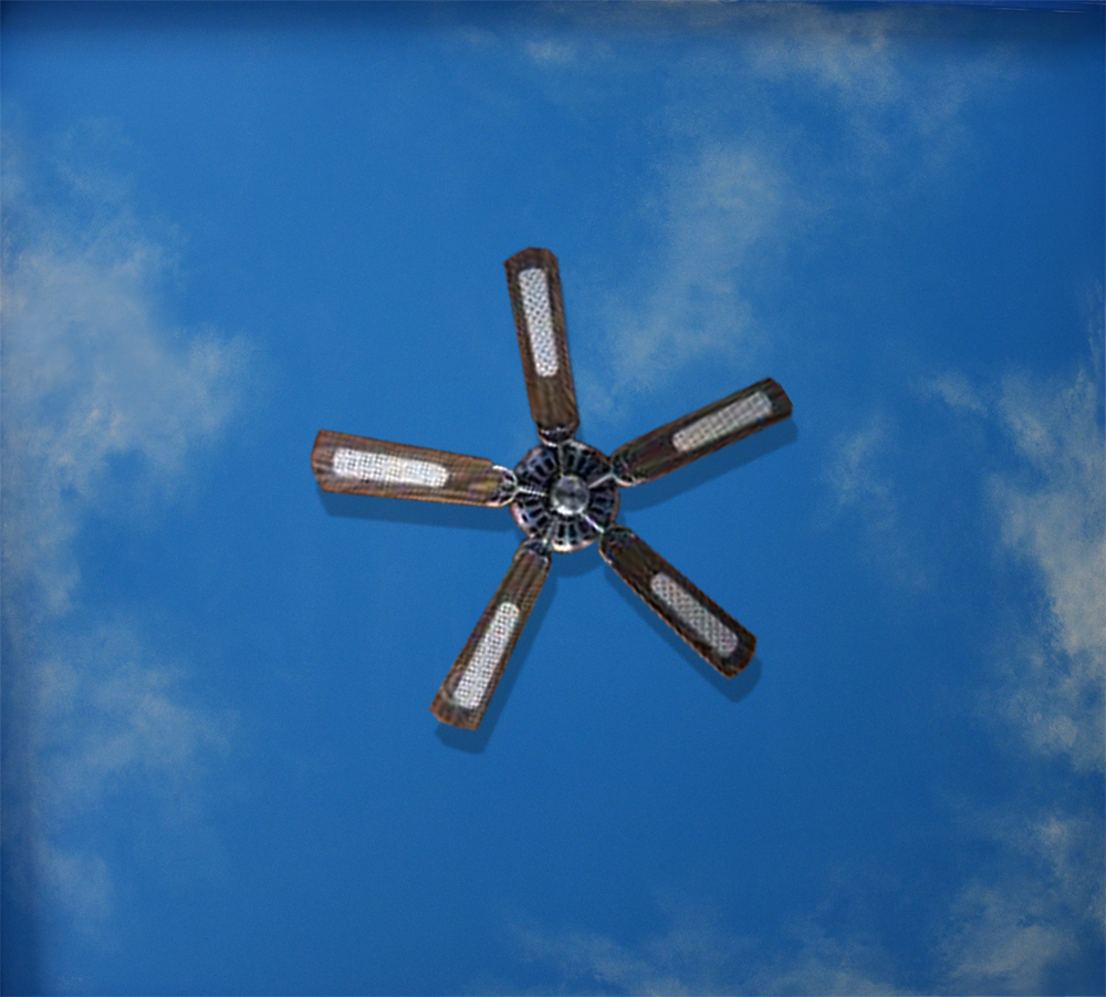 Check out our Ceiling Sky Mural Solutions.
