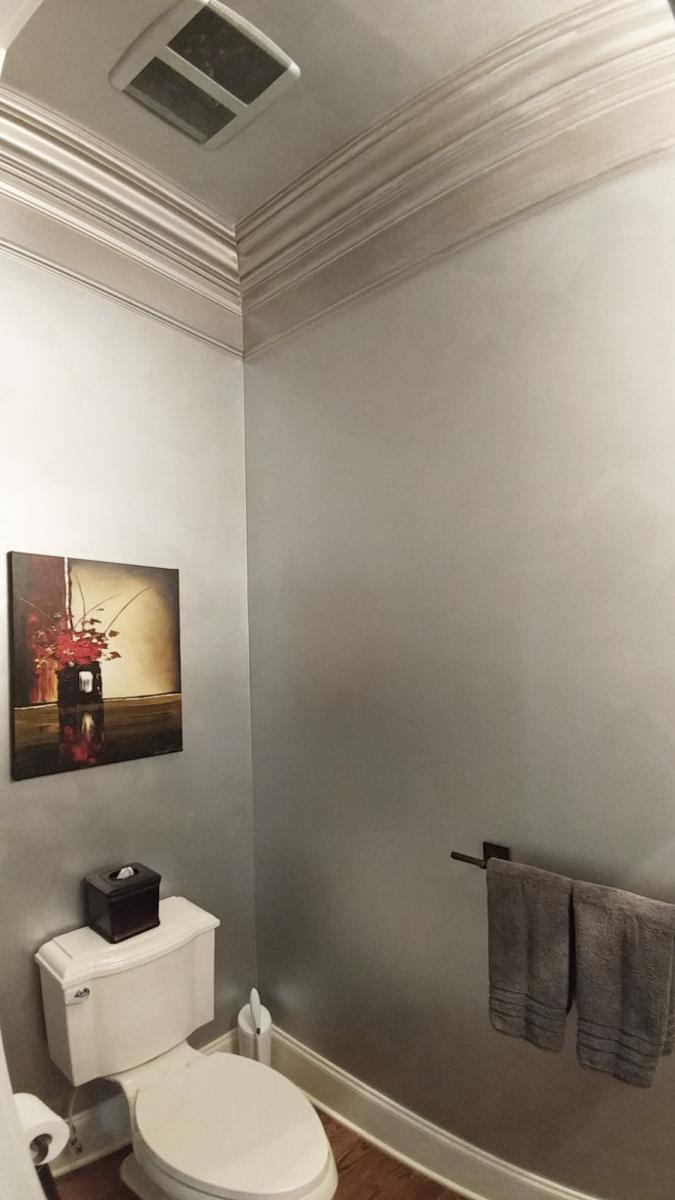 Faux metallic guest bath walls and ceiling design.